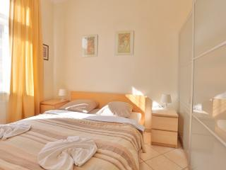 Apartment near Wenceslas Square - Prague vacation rentals
