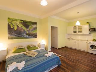 Apartment for friends - Czech Republic vacation rentals