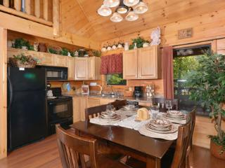 Native Son - Gatlinburg vacation rentals