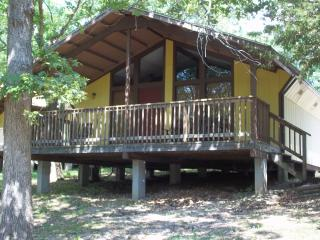 Cabin Near Table Rock & Silver Dollar City, MO - Reeds Spring vacation rentals