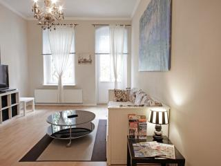 central apartment with luxury shower and free wifi - Berlin vacation rentals