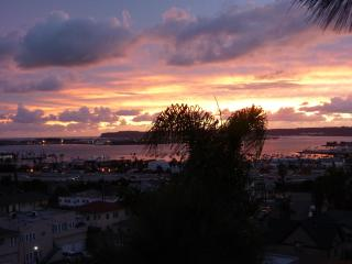 Bankers Hill Downtown Penthouse - Views of SD - Coronado vacation rentals