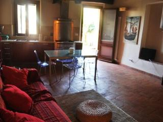 Siena centre-Brown apartment with garden - Siena vacation rentals