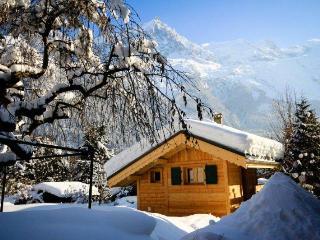 Charming 1 bedroom Mazot style chalet in Chamonix - Chamonix vacation rentals