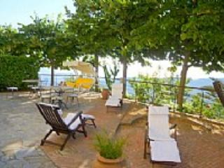 Villa Olivia - Ogliastro Cilento vacation rentals