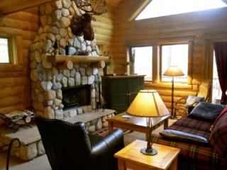 3BR Mountain Cabin - Skiers Paradise, Private, Sleeps 12, Wood Burning Fireplace - Boyne Falls vacation rentals