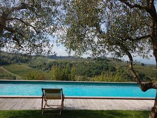 Custode - Castelfiorentino vacation rentals