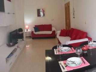 New, Spacious, Confortable With Wifi - La Eliana vacation rentals