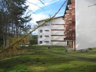 Germany Black Forest, ***apartment Eisenhauer, 625 sqft, Schluchsee - Germany vacation rentals