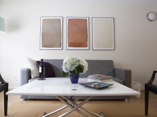 Luxury One bedroom Near Everything - New York City vacation rentals