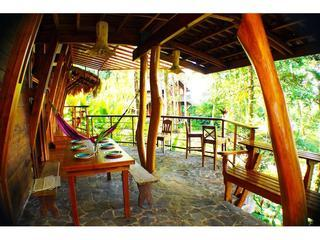 Nature, Jungle, OCEAN VIEW - Casa Mila - Image 1 - Punta Uva - rentals