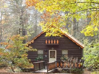 River Cabin in the Blue Ridge Mountains - Linville vacation rentals