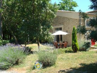Vos vacances en gîte Carcassonne proche. - Raissac-sur-Lampy vacation rentals