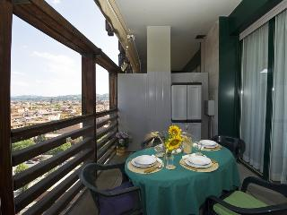 BOLOGNA SKYLINE - Central, park, garage, terrace - Bologna vacation rentals