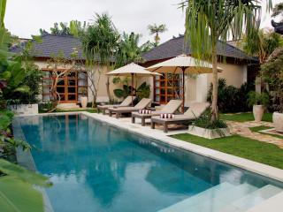 in the heart of Seminyak – new Villa Dayak-Asmat - Seminyak vacation rentals