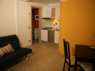 A Casa di Olga 2 bedrooms apartment - split level - Florence vacation rentals