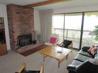 Roomy Townhouse with Spectacular Mountain Views - Stowe Area vacation rentals