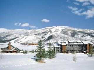 2/13/15 - 2/20/15 THE VILLAGE / STEAMBOAT, CO, 1BR - Image 1 - Steamboat Springs - rentals