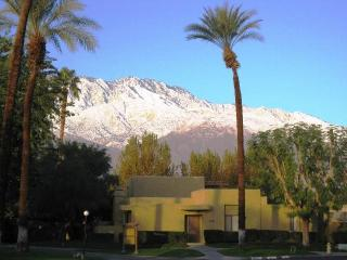 Beautiful Contemporary & Furnished! Pool +Location - Palm Springs vacation rentals