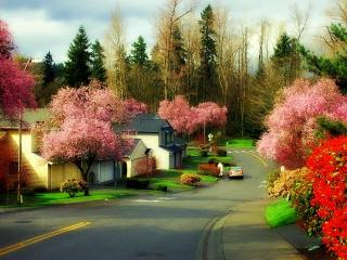 Comfort of home for your vacation! - Redmond vacation rentals