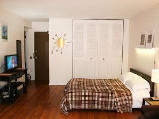 Uptown studio, express to downtown - Chicago vacation rentals