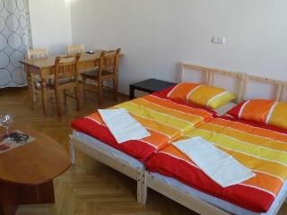 Downtown apartment for 7ppl+parking - Prague vacation rentals