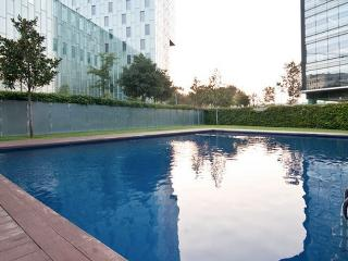 Beautiful Apartment with Pool and Garden - Barcelona vacation rentals