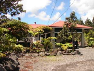 Privacy w/ Hot Tub, Fireplace &  No Cleaning Fees. - Volcano vacation rentals