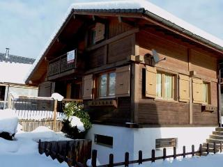 Ski Chalet Morzine Area sleeping 6-8 close to lift - Le Biot vacation rentals