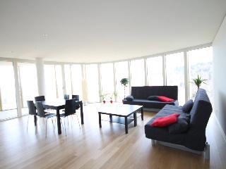LU Superior Löwendenkmal - Engelberg vacation rentals
