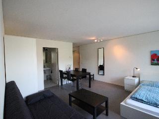 LU Nadelwehr I - Apartment - Central Switzerland vacation rentals