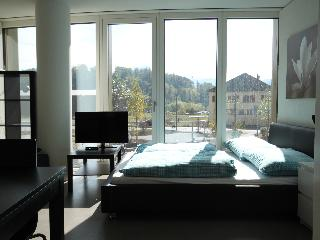 LU KKL II - Apartment - Lungern vacation rentals