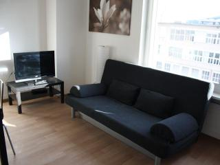ZH Letzigrund Ivory - Apartment - Zurich vacation rentals