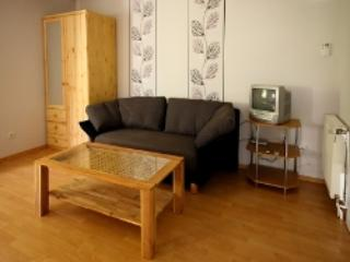 Vacation Apartment in Emmerich am Rhein - 484 sqft, quiet, modern, nice (# 4426) - Bedburg vacation rentals