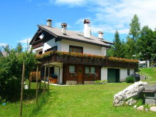 Enjoy the magnificent Dolomites - Perarolo Di Cadore vacation rentals