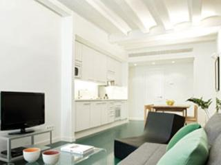 3 Bedrooms apartment in the centre of Barcelona - Barcelona vacation rentals