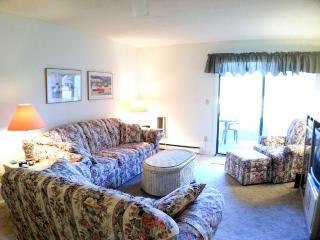 Ocean Edge Street Level with Pool (fees apply) - CH0537 - Brewster vacation rentals