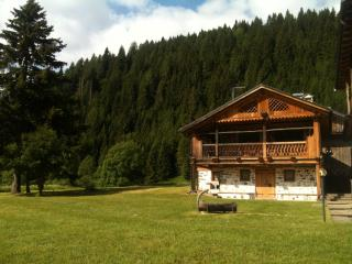 Cottage Tabià Al di là de l'Aiva in the Unesco DolomitiSuperski circuit - Mareson vacation rentals
