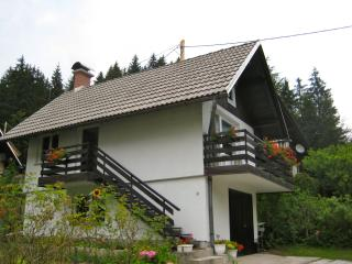 One Bedroom Apartment Jezersko - Zgornje Jezersko vacation rentals