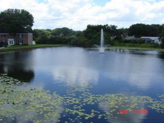 Beautiful condo close to Busch Gardens - Florida North Central Gulf Coast vacation rentals