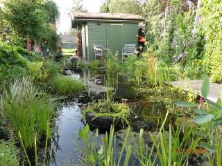 Green, sportive experience in rural Amsterdam - Bergen vacation rentals