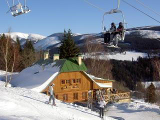 Pension Alenka on the slope Labska-Giantmountains - Harrachov vacation rentals