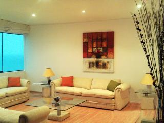 Bright, Ocean front apartment, on Malecon Cisneros, in front of the stairs leading to the ocean. - Lima vacation rentals