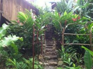 stone path to 'tree house' casita - Tree House cabin  by the sea - Isla Bastimentos - rentals