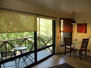 Apartment Excellent location Provi - Santiago vacation rentals
