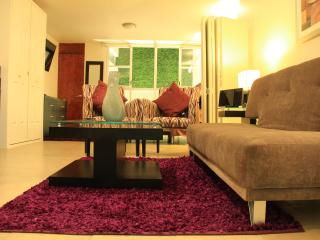 AMAZING STUDIO ONLY $39USD/NIGHT FROM SEP 6 - 21 - Mexico City vacation rentals