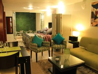 WOW! STUDIO ON GROUND FLOOR BY THE MONTH - Mexico City vacation rentals