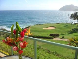 Pukalani (Heaven's Door) a Marriott Grand Residence - Lihue vacation rentals
