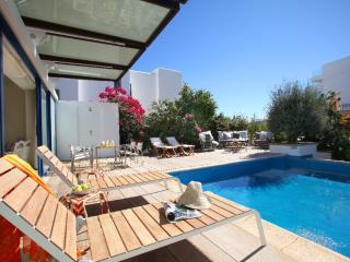 PRNV2 Villa Naxos - CHG - Famagusta vacation rentals