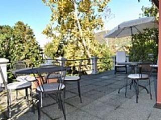 Villa Madalina - Image 1 - Verbania - rentals